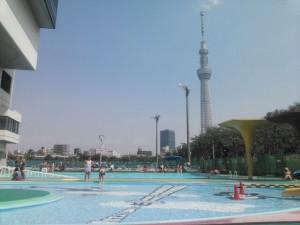 通称『隅田プール』