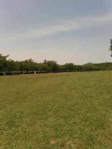 みさと公園
